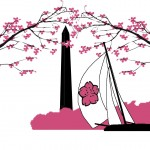 Cherry-Blossom-Vector